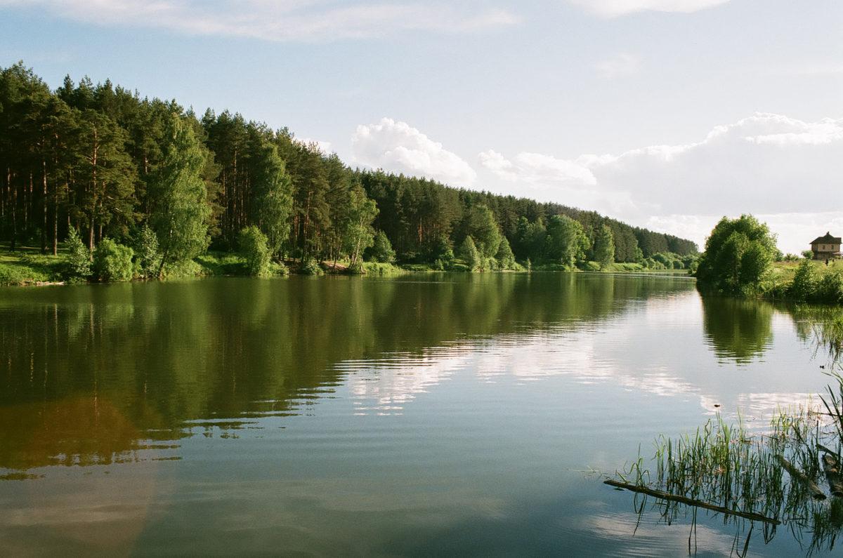 Река Сосновка - плёнка
