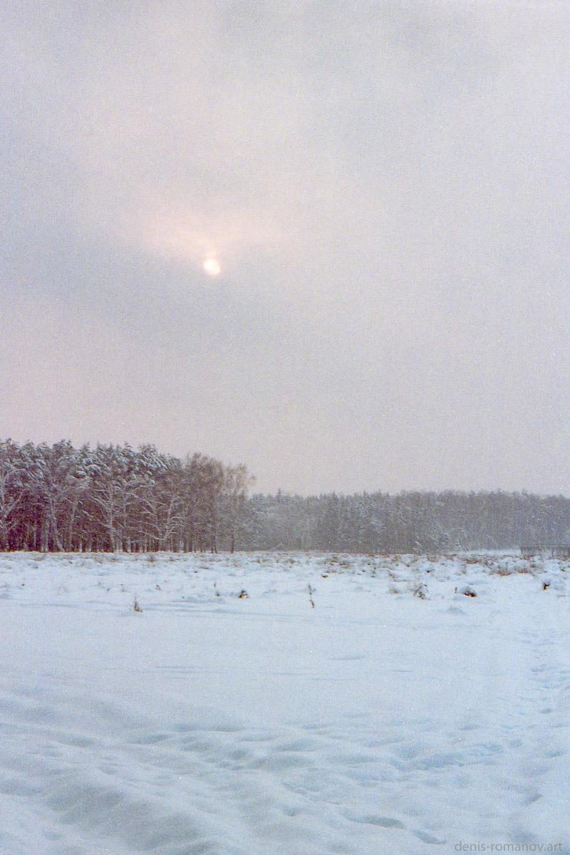 Полотно зимы
