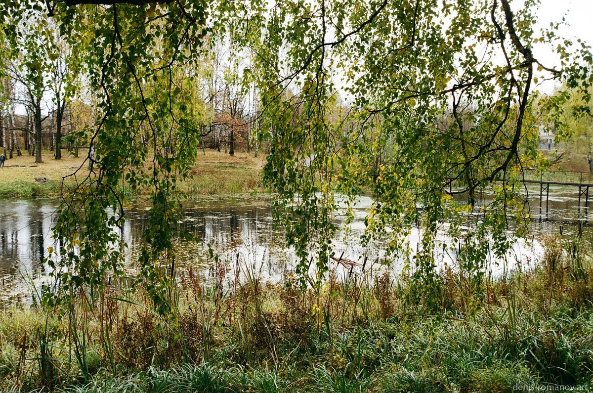 Осень на Петрице